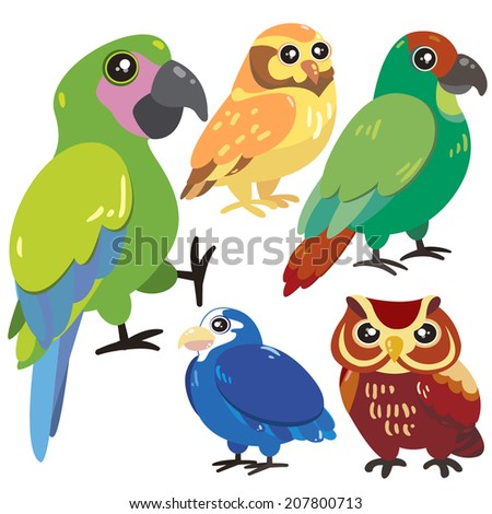 five cute birds set on white background