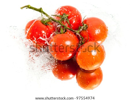five fresh tomatoes in water splash - stock photo