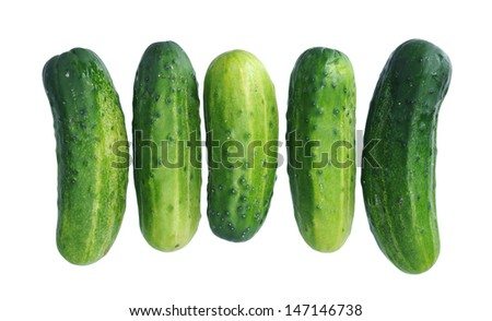 five organic pickle (just picked up) isolated on white background  - stock photo