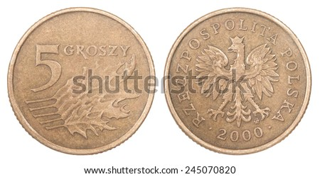 Five Polish groszy coin isolated on white background - stock photo