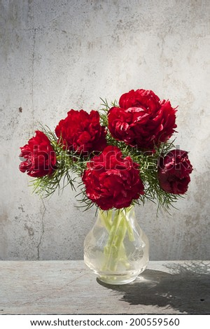 five red peonies at vase