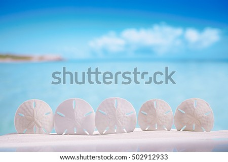 five stars starfish  on white sand beach with ocean , sky and seascape