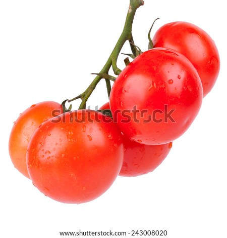 five  tomatos - stock photo