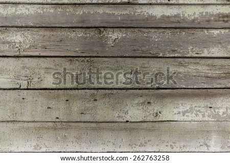 Five very old grey darkened wood planks with falling off green pant, knots, holes from nails shot close up in  detail - stock photo