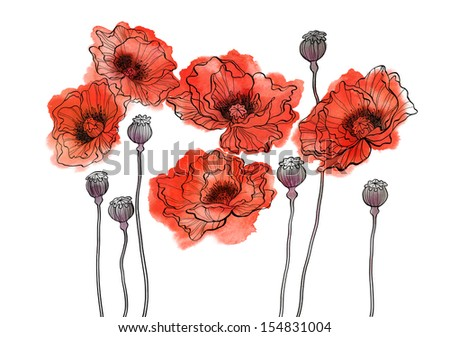 Five watercolor poppies on white background - stock photo