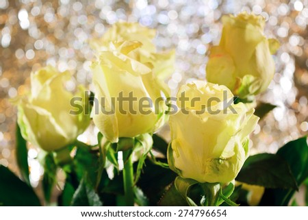 Five white roses against bokeh background - stock photo