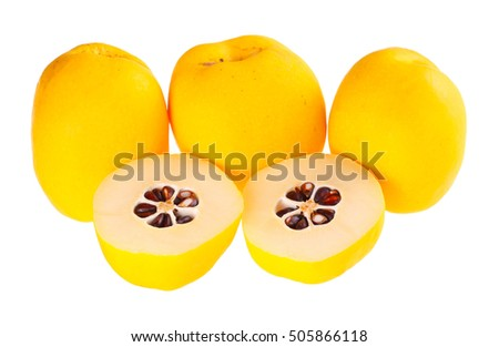 Five whole and cut yellow, ripe fruit of the flowering or Japanese quince (Chaenomeles hybrids) isolated against a white background