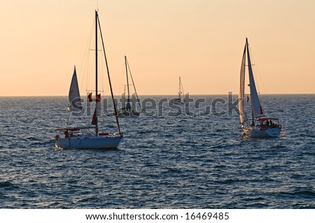 Five yachts sailing on sunset in calm sea
