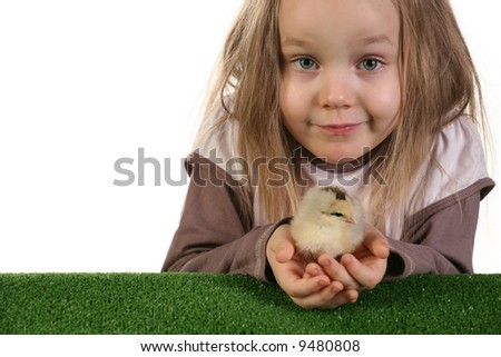 Five years old girl playing with baby chicken over white background - studio shot.