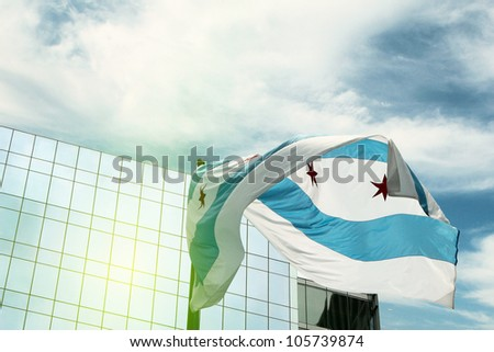Flag of Chicago - stock photo