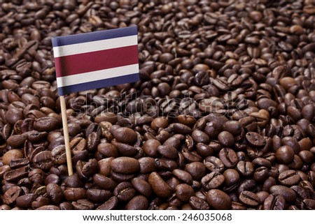 Flag of Costa Rica sticking in roasted coffee beans.(series) - stock photo