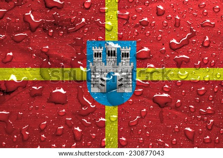 flag of Zhytomyr Oblast with rain drops