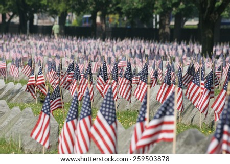 Flags in a cemetery on Veterans Day. - stock photo