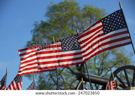 Flags in Veterans Cemetery - stock photo