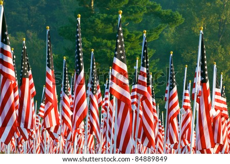 Flags set in a row as part of the healing fields for 9/11/2011 in Grand Rapids Michigan. Each flag was designed to represent a person who died in the terrorist attacks on 9/11/2001. - stock photo