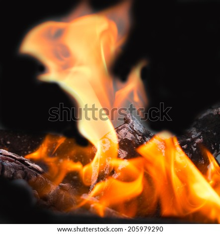 flame fire on coals - stock photo