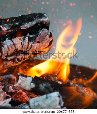 flame fire on hot coals - stock photo