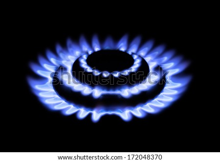 Flame flower. Gas stoves isolated on black. - stock photo