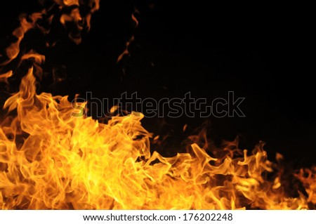 Flame on a black background - stock photo