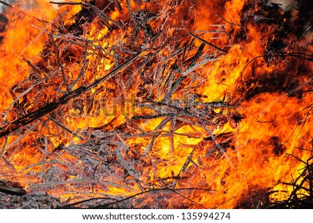 Flame texture. Fire from large heap of burning wood. - stock photo