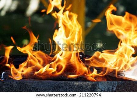 flames of burning wood in brazier close up - stock photo