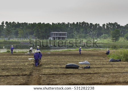 Flamingo Dai Lai, Vinh Phuc province, Vietnam - October 11, 2016 : The female workers who are working with the rudimentary tools at Flamingo Dai Lai resort of Vinh Phuc Province, Vietnam