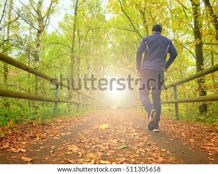 Flare, reflection. Sportsman in  black sportswear run on road. The man is slowly running on asphalt way covered by autumn leaves. Pathway in park, beeches and maples leaves.