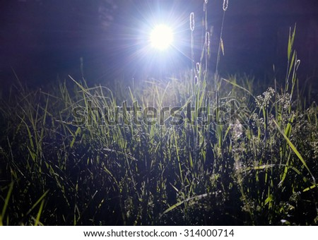 Flashlight in the night - stock photo