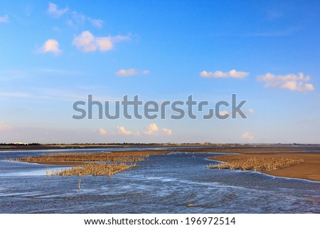 Flat brown marshland against a blue cloudy sky. - stock photo