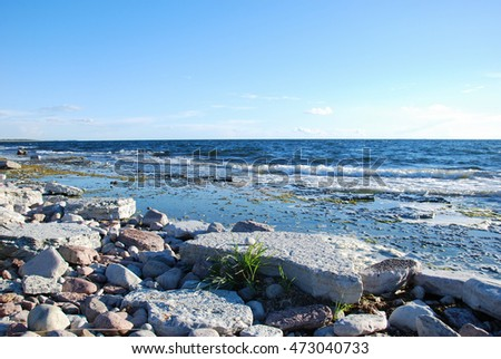 Flat rock coastal view at the swedish island Oland in the Baltic sea