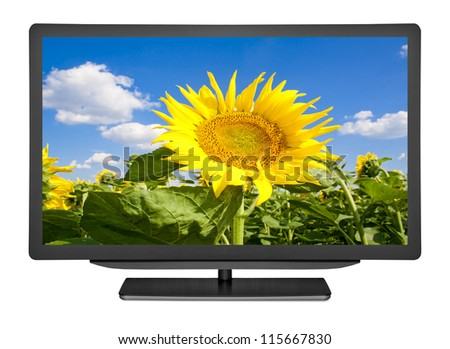 flat television on the white backgrounds - stock photo