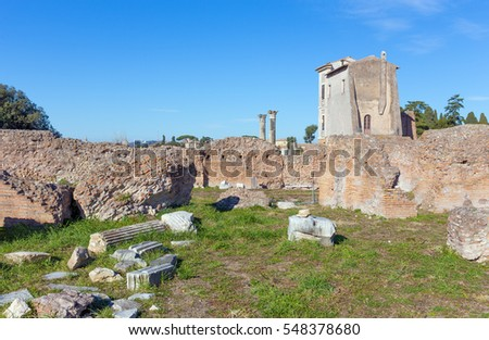 Flavian Palace on the Palatine Hill in Rome, Italy