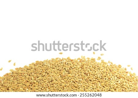 flax seed in pure white background - stock photo