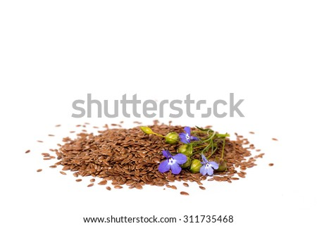 flax seeds and flower isolated on white background - stock photo