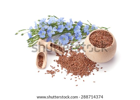 flax seeds and flowers - stock photo