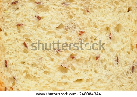 Flax Seeds Bread; a slice of bread with linseeds - stock photo