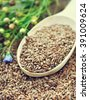Flax seeds in spoon and linum plants on linseed background - stock photo