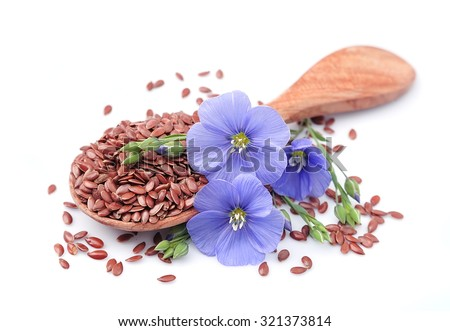 Flax seeds with flowers close up on white. - stock photo