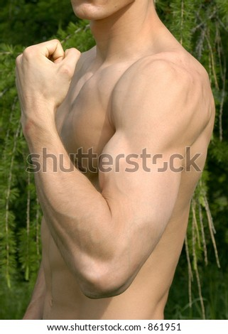 Flexed biceps - stock photo