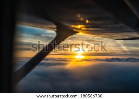 Flight at sunset - stock photo