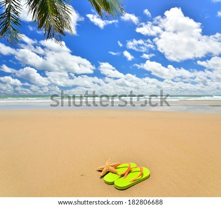 Flip-flops and starfish on tropical beach -- Vacation Concept  - stock photo