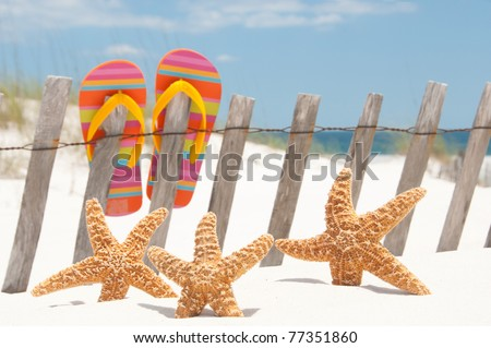 flip flops hanging on fence by starfish - stock photo