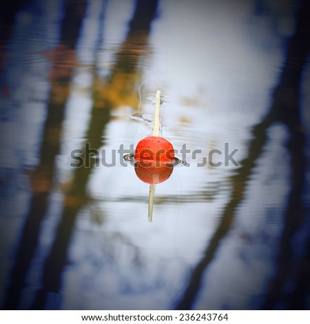Float for fishing on the water. Angling background. - stock photo