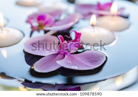 Floating candle and orchid flower - stock photo