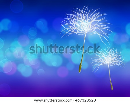 Floating dandelion seeds in the wind. Abstract blue background.