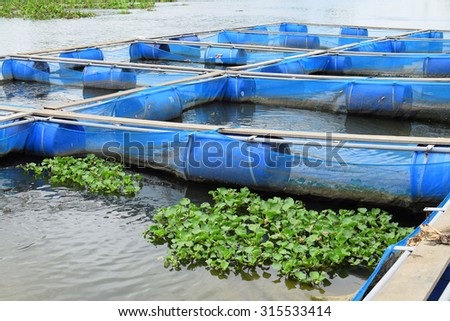 Floating fish farm in river - stock photo