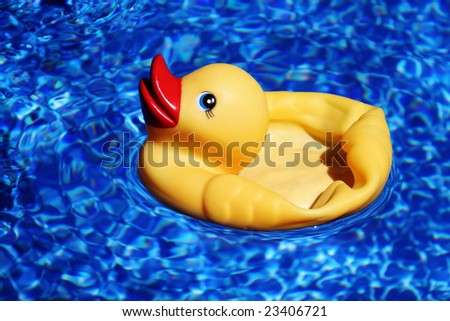 Floating Rubber Duck - stock photo