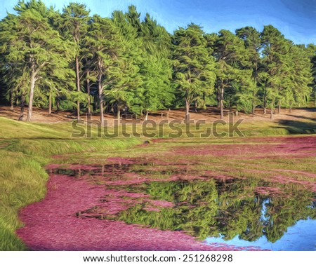 Flooded Cranberry Bog Just Before Harvest - stock photo