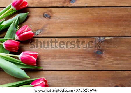 flora, gardening and plant concept - close up of red tulip flowers on wooden table with copy space - stock photo