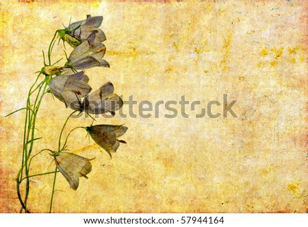 floral background image with interesting texture